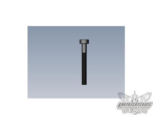 Intech 3x25 Cap Head Screw x10