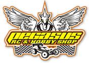 Pegasus Team Associated Indonesia - Toko Online RC car/Car Remote control dan barang-barang hobby lainnya di Jakarta Indonesia